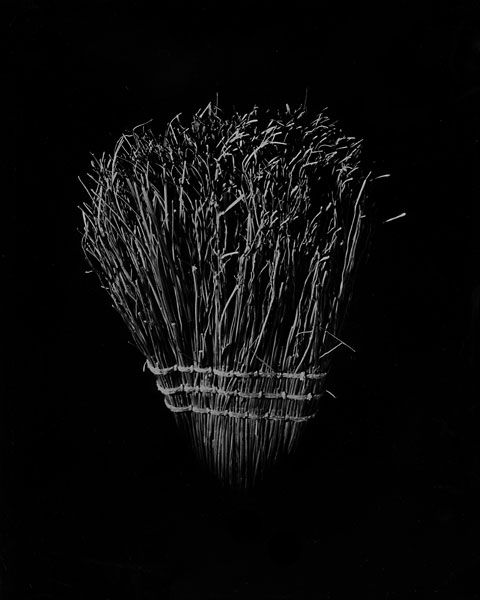 broom1.jpg