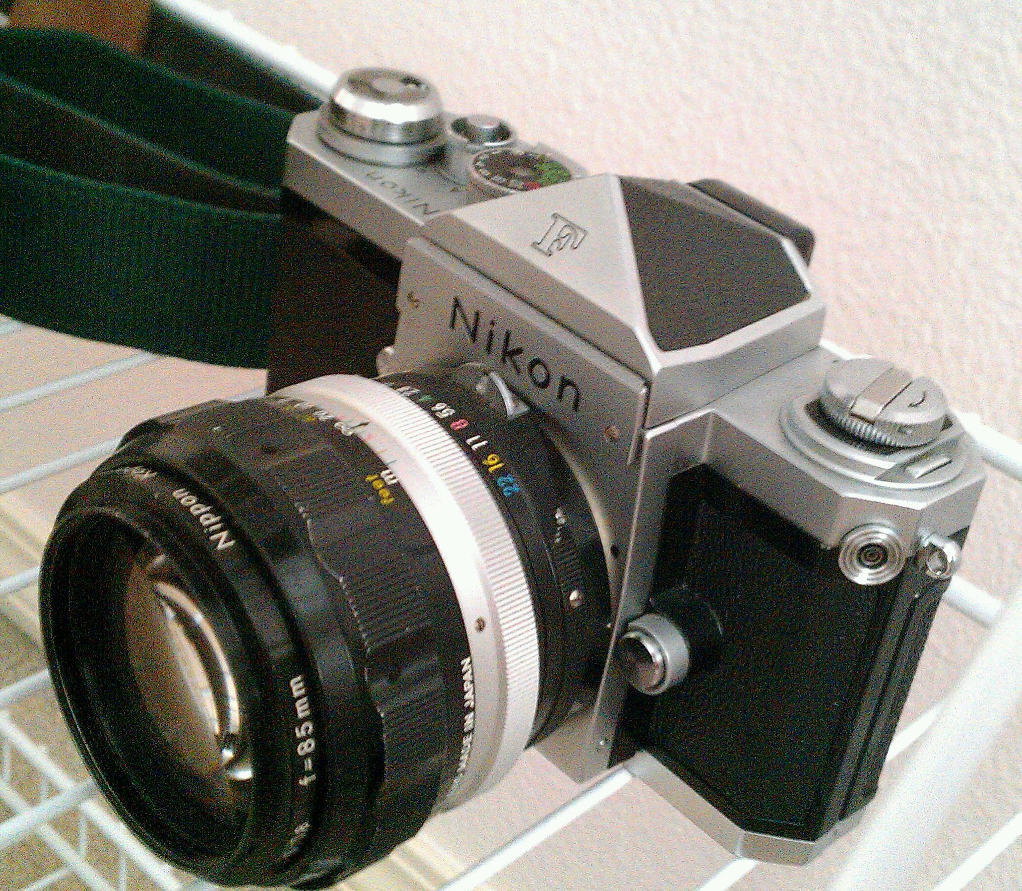 IMAG4501-1.jpg