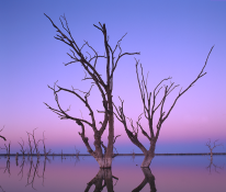 Lake_Bonney_BarmeraSA_6 Oct2012_FACEBOOK.png